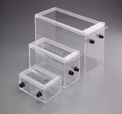Acrylic Small Animal Induction Chambers